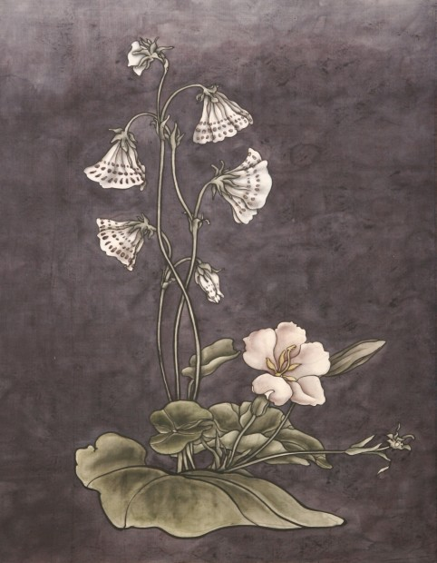Yang Jiechang 杨诘苍, These are still Flowers 1913-2013 No. 6 还是花鸟画1913-2013 6号, 2013