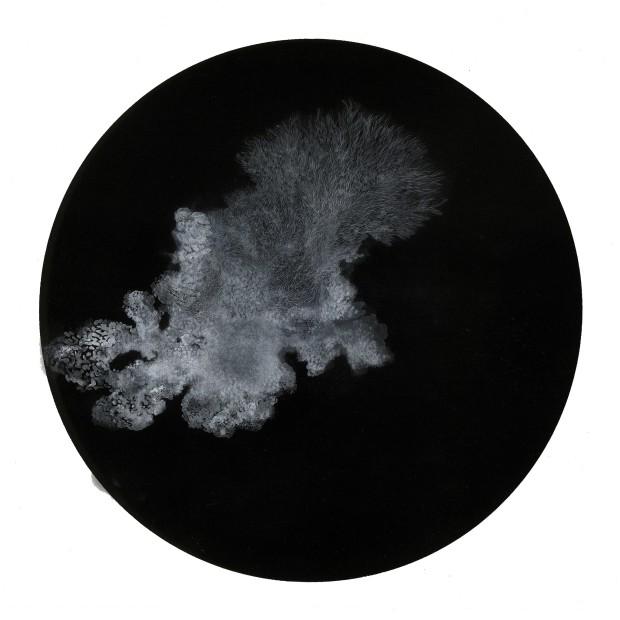 Bingyi 冰逸, 溎, 2013-2014