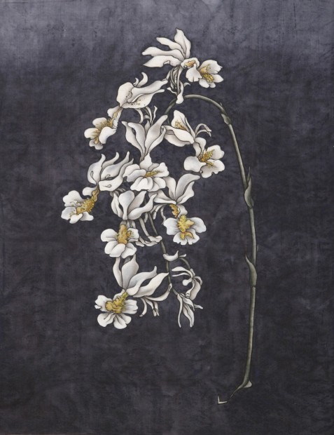 Yang Jiechang 杨诘苍, These are still Flowers 1913-2013 No. 7 还是花鸟画1913-2013 7号, 2013