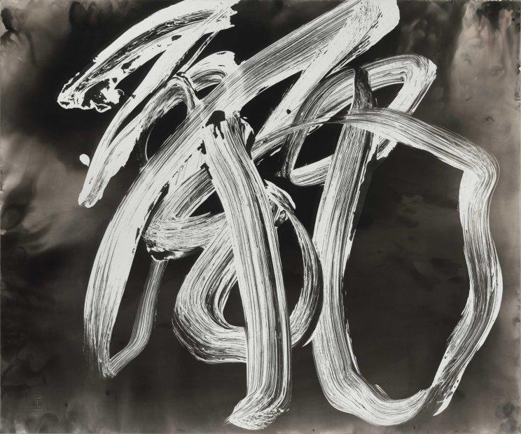 Wang Dongling 王冬龄, Beauty 麗, 2013