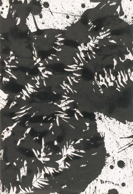 Huang Zhiyang 黄致阳, Morphological Ecology 012 形象生态012, 2000