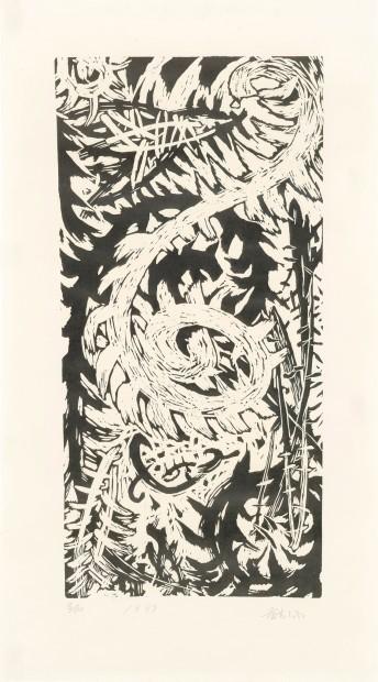 Huang Zhiyang 黄致阳, Morphological Ecology 001 形象生态001, 1987