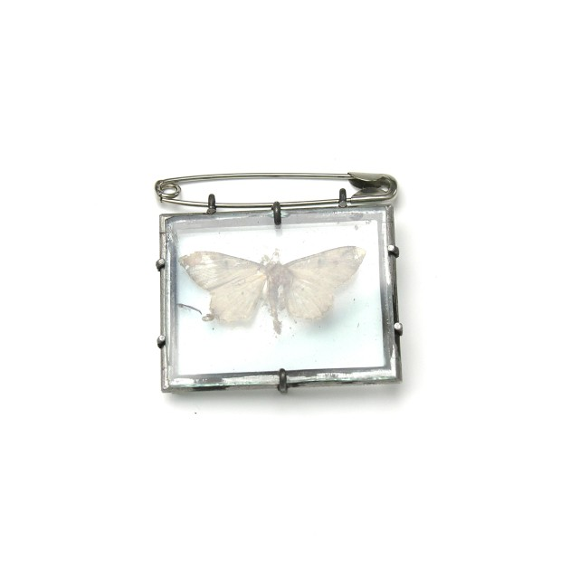 Moth, 2002