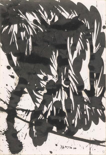 Huang Zhiyang 黄致阳, Morphological Ecology 014 形象生态014, 2000
