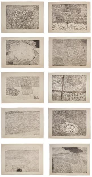 Xu Bing 徐冰, Series of Repetitions 复数系列 , 1988