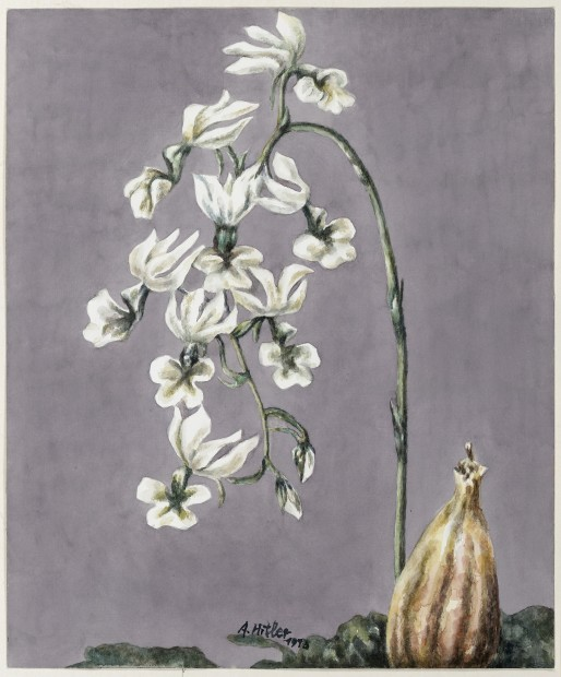 Yang Jiechang 杨诘苍, These are still Flowers 1913-2013 No. 17 还是花鸟画1913-2013 17号, 2013