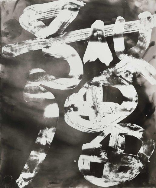 <span class=&#34;artist&#34;><strong>Wang Dongling &#29579;&#20908;&#40836;</strong></span>, <span class=&#34;title&#34;><em>No Borders &#26080;&#30086;</em>, 2013</span>