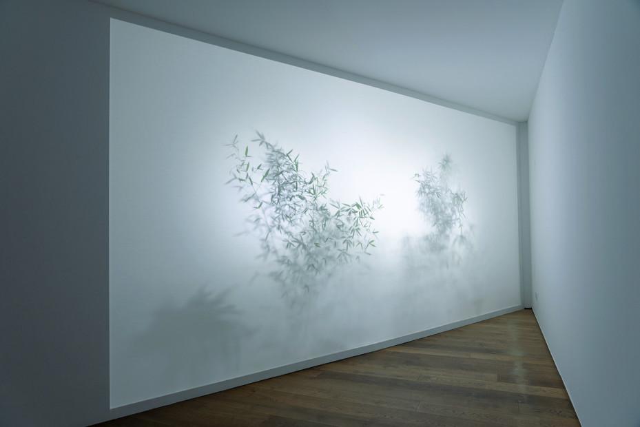 Cho Duck Hyun 曺德铉, The Garden of Sound 声音花园, 2015