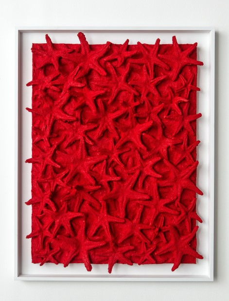 <em>Untitled (red star)</em>, 2014