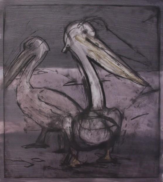 Malcolm Moran, Pelican Prepares Himself to Fish #1