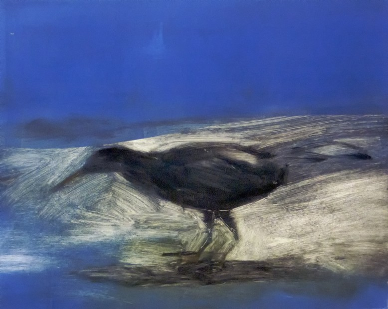 Malcolm Moran, A Bird Lost in His Own Space
