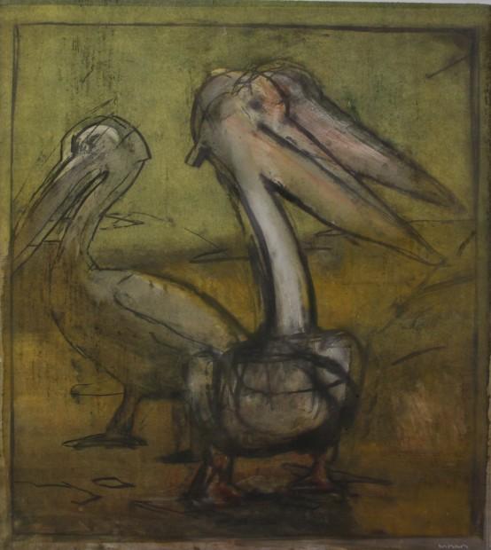 Malcolm Moran, Pelican Prepares Himself to Fish #2