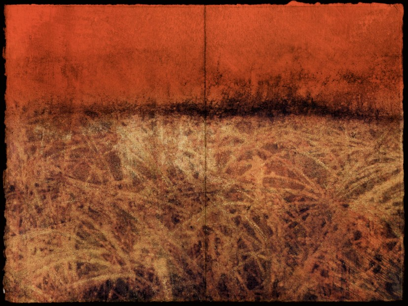 Dorothy Simpson Krause, Marsh (diptych), 2008, pigment print to paper, on board with encaustic, 24 x 32 in.