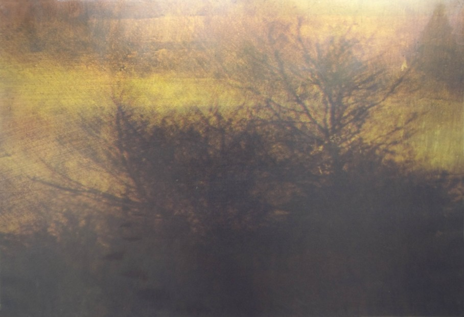Dorothy Simpson Krause, Trace, 2008, UV cured flatbed mixed media print, 32 x 48 in.