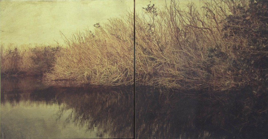 Dorothy Simpson Krause Backwater, 2008 Signed and dated lower right UV cured flatbed print on Dibond with metallic pigments and mixed media 24 x 48 in.