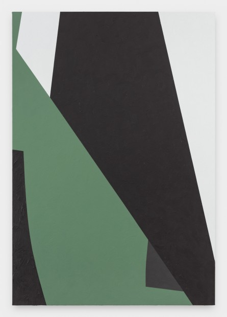 Virginia Jaramillo, Site: No. 10 37.2309° N, 108.4618° W , 2018 Acrylic on canvas, 198.1 x 137.2 cm, 78 x 54 in