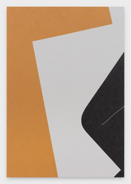 Virginia Jaramillo, Site: No. 9  37.2172° N, 38.8544° E , 2018  Acrylic on canvas, 198.1 x 137.2 cm, 78 x 54 in