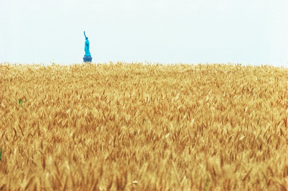 Agnes Denes, Wheatfield – A Confrontation: Battery Park Landfill, Downtown Manhattan – With Statue of Liberty Across the Hudson, 1982, Courtesy Leslie Tonkonow Artworks + Projects, New York