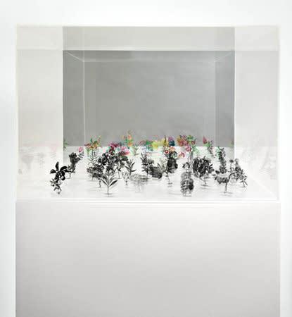 Untitled (Black Field Box No. 4), 2007, Plexi box size: 50 x 76 x 76 cms