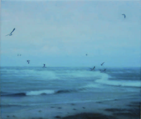 Seagulls, 2007, Oil on canvas, 30 x 35 cm