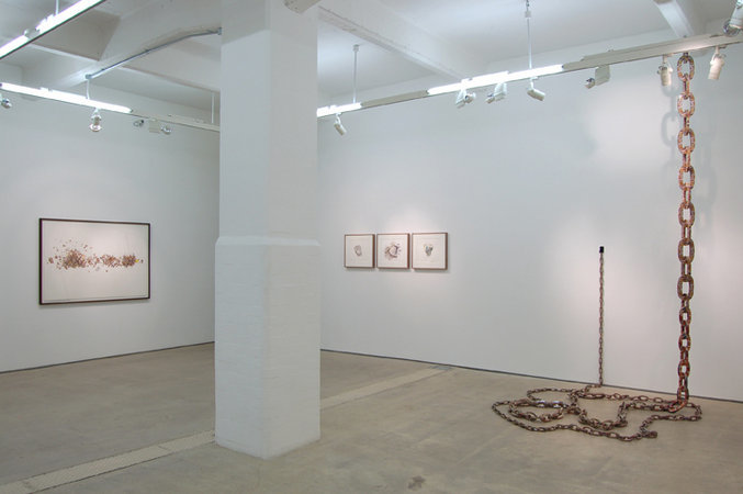 Ignoble Rot, Installation view at Hales Gallery, London, 2007-8