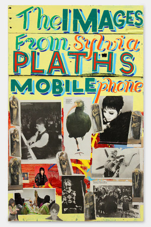 <p>The Images from Sylvia Plath's mobile phone, 2012, signwriters paint on board, 112 x 70 cm</p>