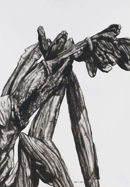 <span class=&#34;artist&#34;><strong>Cai Jin &#34081;&#38182;</strong></span>, <span class=&#34;title&#34;><em>Banana 360 &#32654;&#20154;&#34121;360</em>, 2016</span>