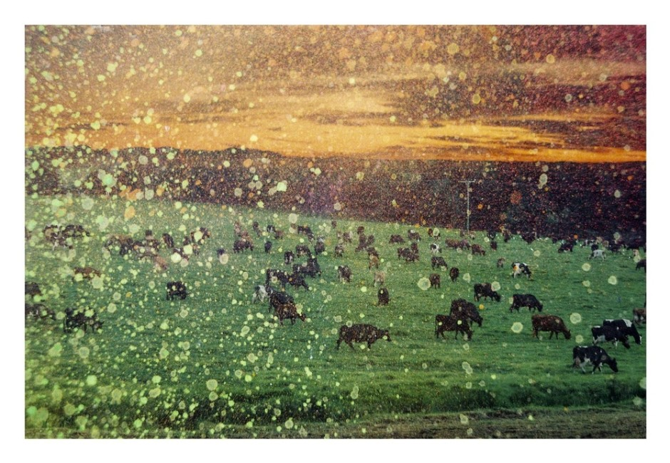 """<div class=""""artist""""><strong>Dylan Culhane</strong></div> <div class=""""title""""><em>Impossible Scene with Cows</em>, 2011</div> <div class=""""medium"""">Giclee print on Hahnemulle German Etching Paper</div> <div class=""""dimensions"""">105 x 75 cm<br />41 3/8 x 29 1/2 in</div> <div class=""""edition_details"""">Edition of 3</div>"""