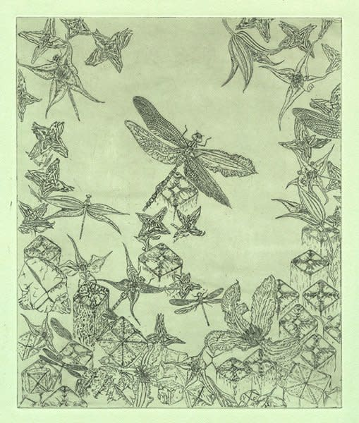 """<div class=""""artist""""><strong>Gemma Anderson</strong></div> <div class=""""title""""><em>Isomorphology: Four Fold Symmetry</em>, 2013</div> <div class=""""medium"""">Copper etching, Drawn from Natural History Museum Collections</div> <div class=""""dimensions"""">40 x 45 cm<br />15 3/4 x 17 3/4 in</div>"""