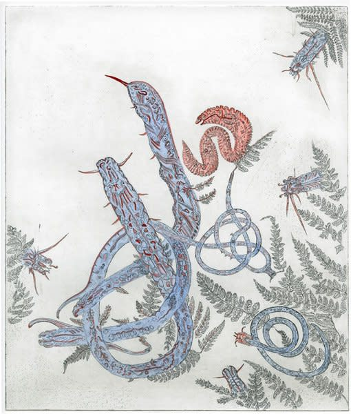 """<div class=""""artist""""><strong>Gemma Anderson</strong></div> <div class=""""title""""><em>Nematode</em>, 2012</div> <div class=""""medium"""">Copper etching, hand painted with Japanese Inks. Drawn from Natural History Museum Collections</div> <div class=""""dimensions"""">50 x 40 cm<br />19 3/4 x 15 3/4 in</div>"""