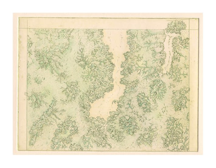 """<div class=""""artist""""><strong>Gemma Anderson</strong></div> <div class=""""title""""><em>Lichen, after """"Land Classification Map of Parts of N.E. California and N.W. Nevada"""" by G.M.</em>, 2010</div> <div class=""""medium"""">Etching on copper</div> <div class=""""dimensions"""">15 x 18 cm<br />5 7/8 x 7 in</div>"""