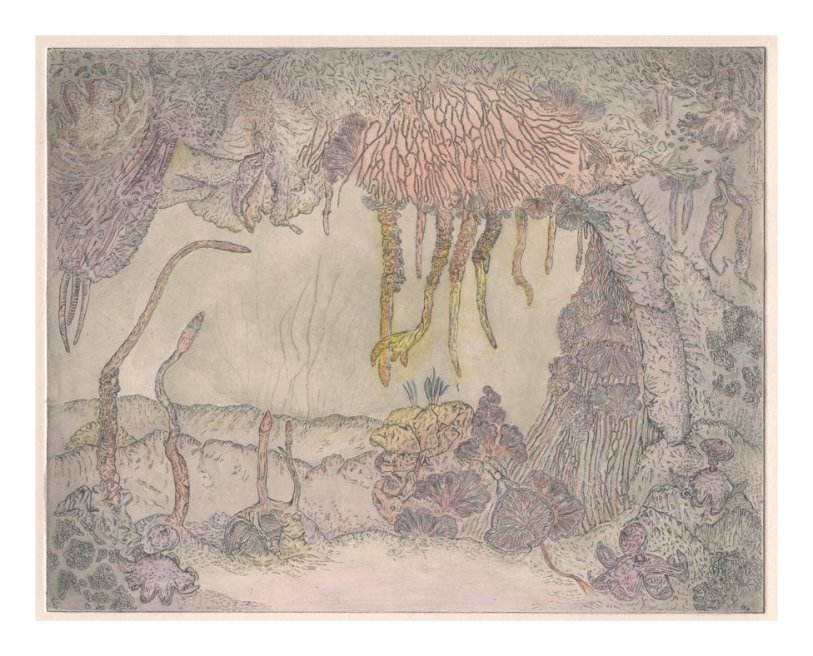 """<div class=""""artist""""><strong>Gemma Anderson</strong></div> <div class=""""title""""><em>Mycology, after """"The Grotto at Antiparos"""", Engraving Unknown</em>, 2010</div> <div class=""""medium"""">Etching on copper</div> <div class=""""dimensions"""">30 x 35 cm<br />11 3/4 x 13 3/4 in</div>"""