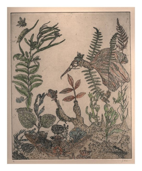 """<div class=""""artist""""><strong>Gemma Anderson</strong></div> <div class=""""title""""><em>Humbolt Current, Nymphs Pond</em>, 2010</div> <div class=""""medium"""">Copper etching hand colored with color pencil and Japanese paints</div> <div class=""""dimensions"""">30 x 35 cm<br />11 3/4 x 13 3/4 in</div>"""