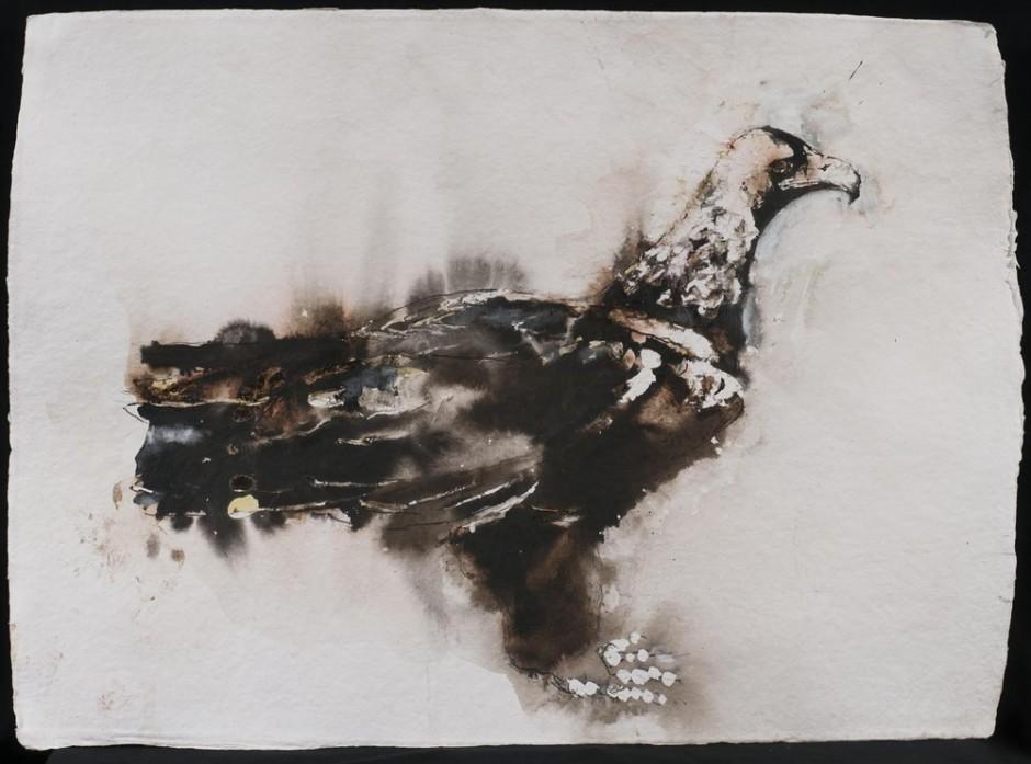 """<span class=""""artist""""><strong>Paul Richards</strong></span>, <span class=""""title""""><em>Spanish Eagle</em>, 2013</span>"""