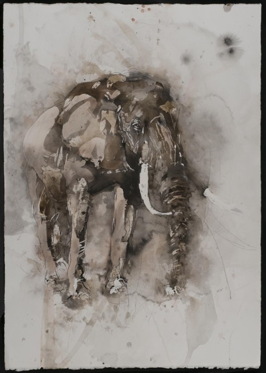 "<span class=""artist""><strong>Paul Richards</strong></span>, <span class=""title""><em>Elephant</em>, 2014</span>"