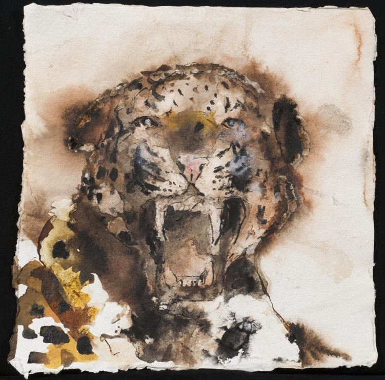 "<span class=""artist""><strong>Paul Richards</strong></span>, <span class=""title""><em>Cheetah Chester Zoo</em>, 2013</span>"