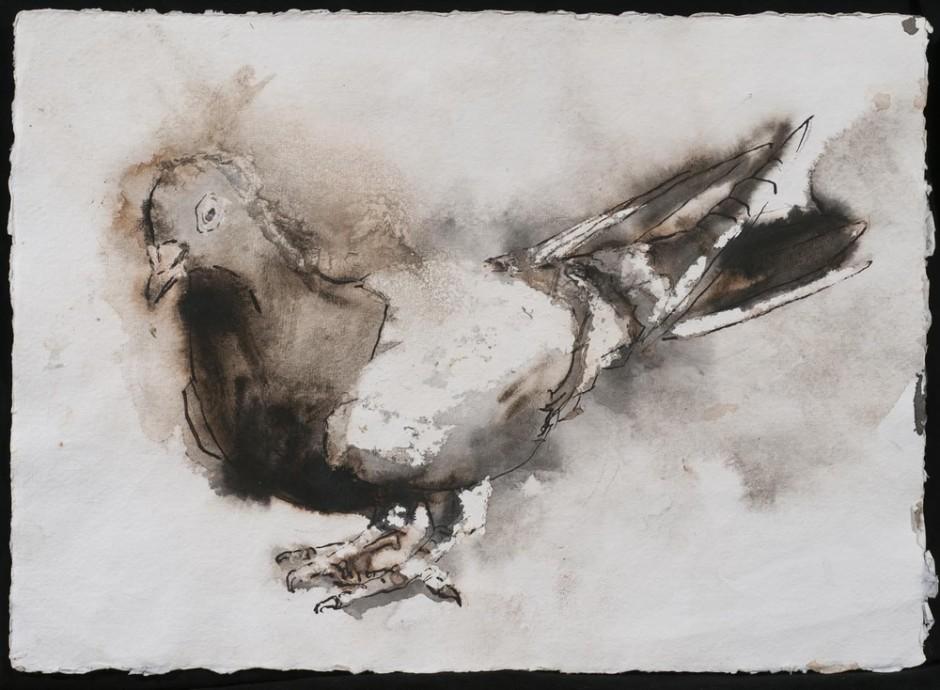 "<span class=""artist""><strong>Paul Richards</strong></span>, <span class=""title""><em>London Pigeon</em>, 2013</span>"
