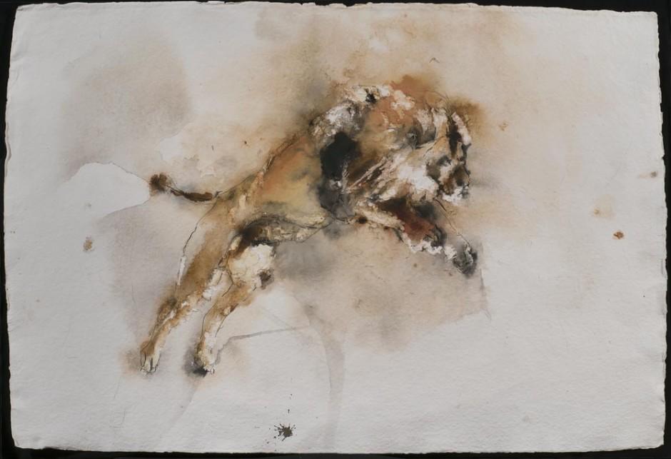 "<span class=""artist""><strong>Paul Richards</strong></span>, <span class=""title""><em>Lion, London Zoo</em>, 2013</span>"