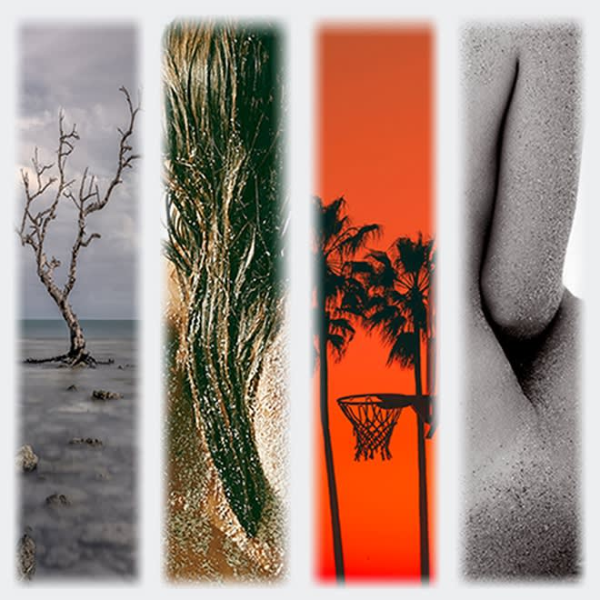 Montage: An Exhibition of Contemporary Photographers
