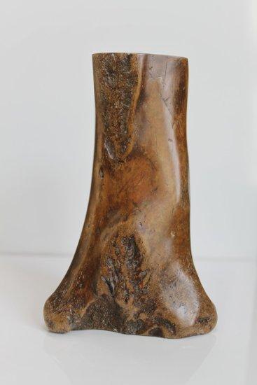 Tidal Ossuary 16F, 2009-2010