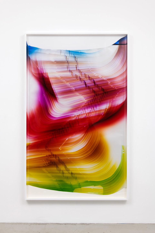 Image: Mariah Robertson  216, 2017  unique chromogenic print  80 1/2 x 50 inches (204.5 x 127 cm)