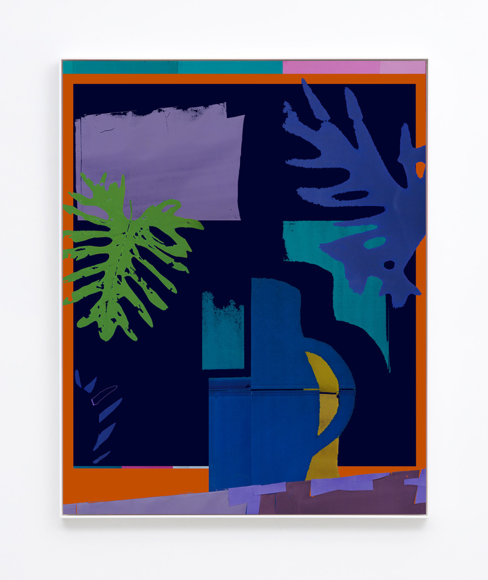 Image: Daniel Gordon  Philodendron, 2017  signed and numbered verso  archival pigment print on canvas  49-5/8 x 39-5/8 inches  unique