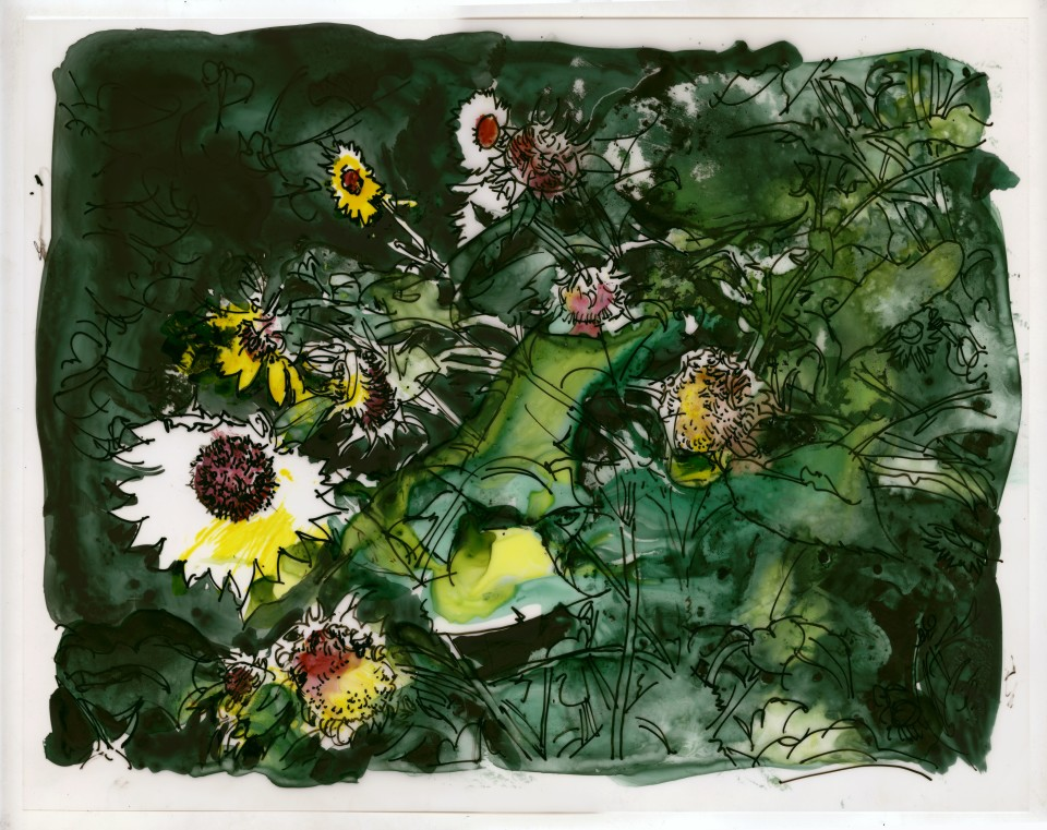 Image: Jimmy Wright  Sunflower No. 1, 2018  signed and dated recto  ink on Yupo Paper  11 x 14 inches (27.9 x 35.6 cm)
