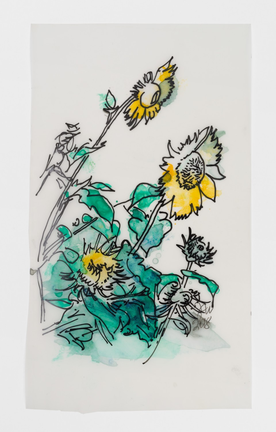 Image: Jimmy Wright  Sunflower No. 4, 2018  signed and dated recto  ink on Yupo Paper  10 x 5 3/4 inches (25.4 x 14.6 cm)