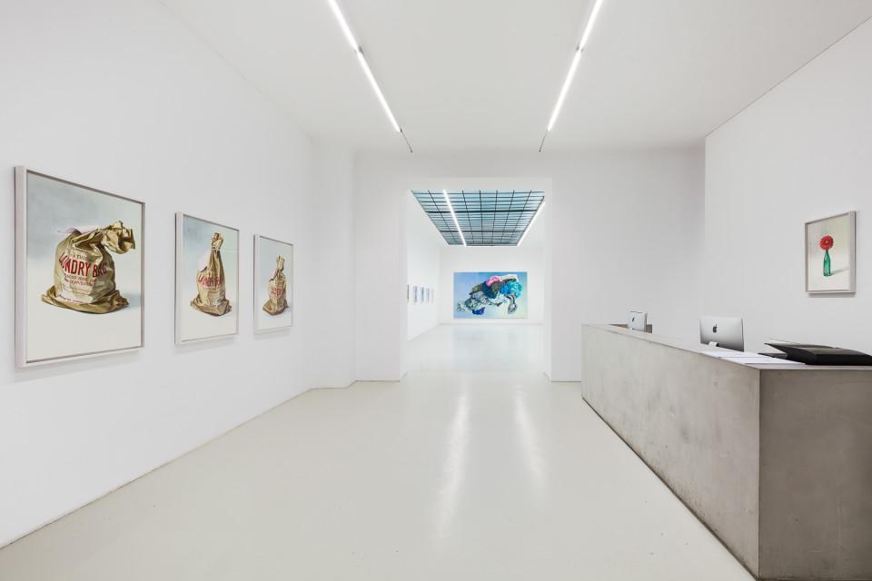 Alina Kunitsyna Installation View I: Helium ecstasy, 2019