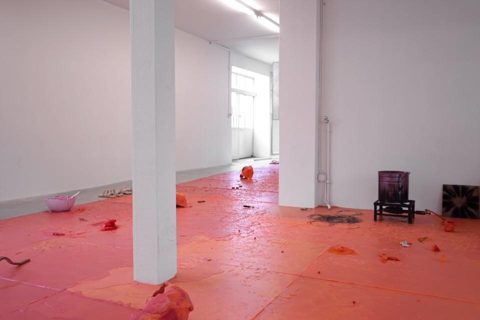 Karl Karner, Installation Shot - Nude Program, 2016