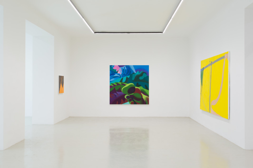 Delphine Hennelly, Kathryn Kerr, Leigh Ruple, Nathalie Shepherd & Faye Wei Wei Installation View I, The Picture Is A Forest, 2019