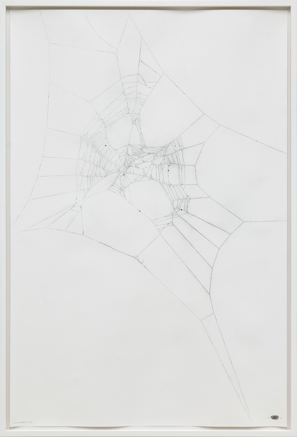 Maximilian Prüfer  Mothercity 1b, 2015  Naturantypie Spider webs on paper  134 x 90 cm 52 3/4 x 35 3/8 in