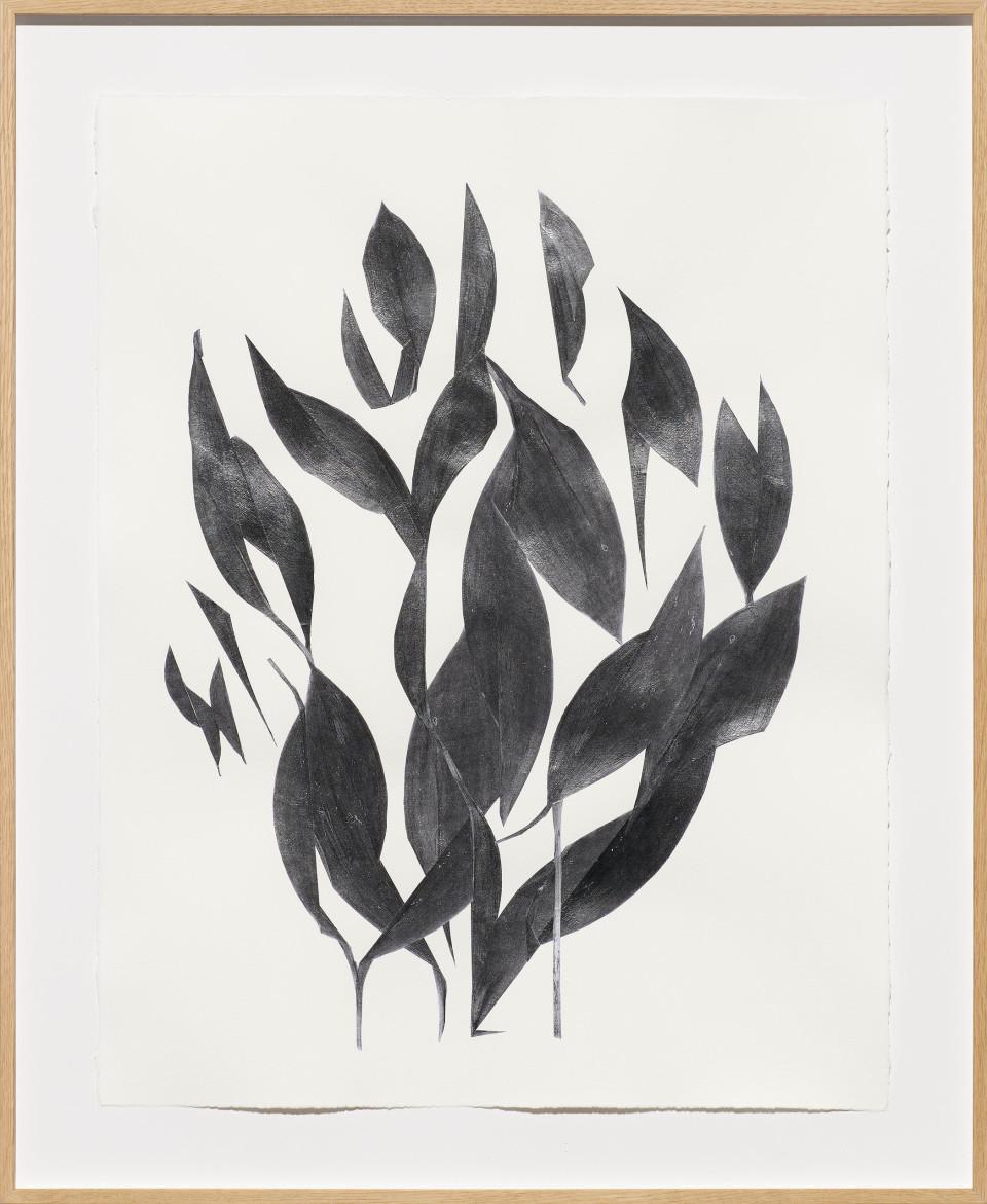 Frauke Dannert Palisade , 2018 Paper Collage 65 x 50 cm 25 5/8 x 19 3/4 in