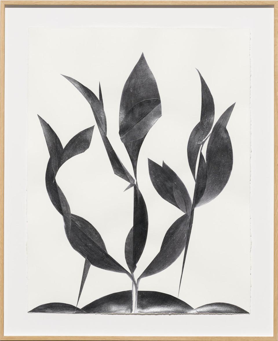 Frauke Dannert  Folie, 2018  Paper Collage  65 x 50 cm 25 5/8 x 19 3/4 in